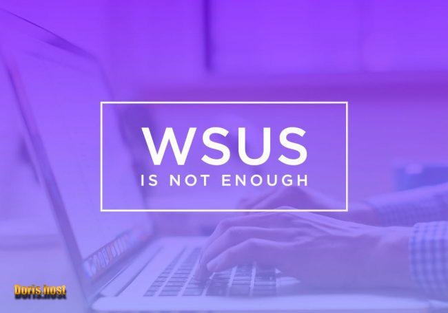 برخی از به روز رسانی های ارائه شده توسط WSUS عبارتند از: به روز رسانی های مهم،