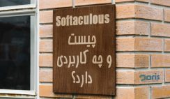 Softaculous چیست