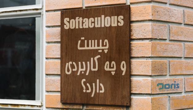 Softaculous چیست